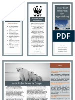 polar bear brochure