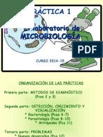 Practica 1 GRADO (14-15).pdf