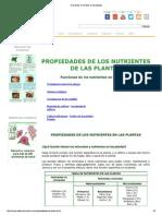 Nutrientes minerales en las plantas.pdf