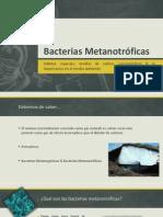 Bacterias Metanotróficas Por Diego Cordero Gallegos.