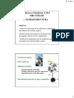 Clase 1 CELULA Y ORGANELOS Modo de Compatibilidad