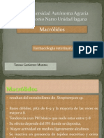 antibioticos macrolidos veterinaria