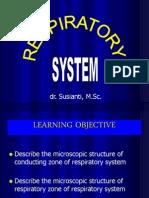 Respiratory System Ss