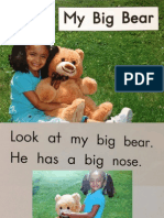 my big bear copy