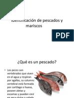id  de pescados y mariscos