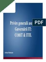 Introducere Guvernare IT