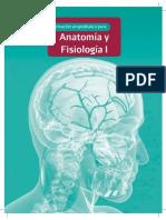 71 P AnatomiaFisiologia 11B