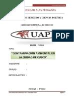 monografia de contaminacion ambiental (Autoguardado).docx