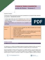 Pautas Proyecto Grupal-2011