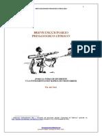 dicicionario pedagogico citrico