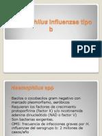 haemophilus.ppt