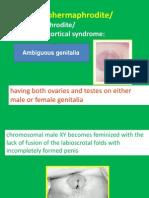 Ambiguous Genitalia 5