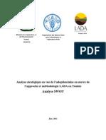 Rapport SWOT Projet LADA Tunisie Juin 2011final (1)