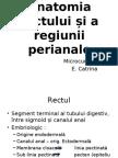 anatomia rectului si a regiunii perianale