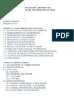 Unfv Fcfc Estructura Informe Final Tesis