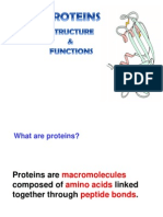 Proteins INFO