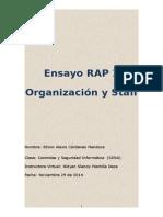 Ensayo RAP 2