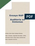 Ensayo RAP 3