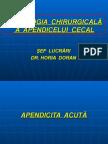 SEMIOLOGIA  CHIRURGICALA A APENDICELUI