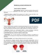 Enfermedades Del Aparato Reproductor