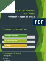 Principais Ecossistemas Do Ceará