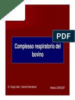 Complesso Respiratorio Del Bovino