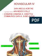 P.P Cardiovasculare IV