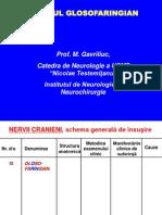 IX. Nervul Glosofaringian