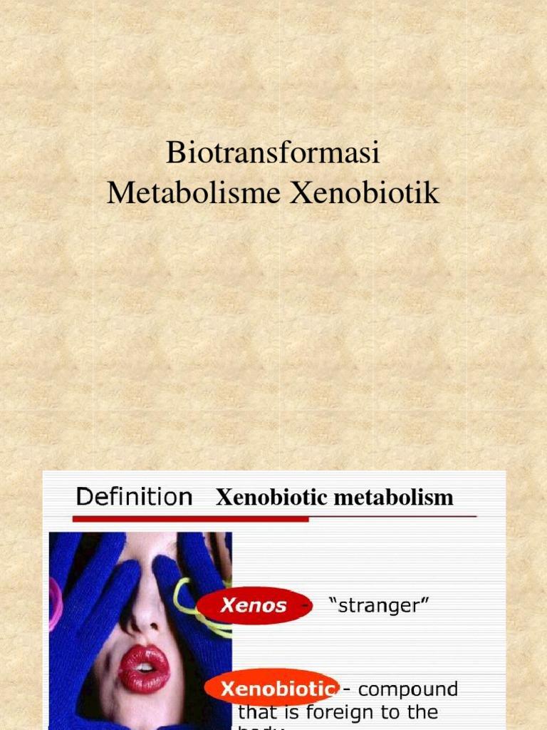 Xenobiotic Fkbiotransformation Drug Metabolism Biochemistry