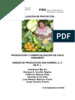 Produccion y Comercializacion Chile Habanero