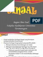 Ginjal-KBK 2010.ppt