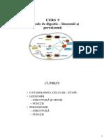 CURS 9.pdf