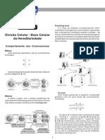 20090821080710 Curso de Biologia - Marcelo2