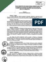 Reglamento Registro de Consultoras Ambientales.pdf
