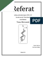 Referat- Microunde - Sireaev Vladislav