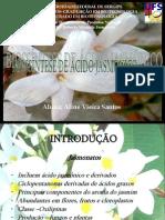 BIOSSÍNTESE DE ÁCIDO JASMÔNICO