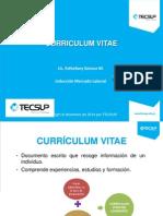 2 Curriculum Vitae (1)