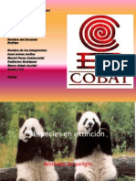 Power Point Animales