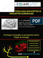 1. Fiziologia durerii