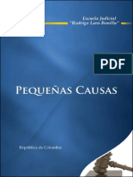 pequenas causas 25 01 08.pdf