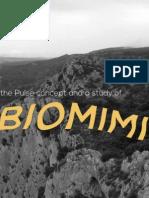 Biomimicry Process Book SCAD Lacoste 2014