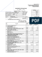 raport financiar