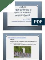 Cultura organizationala.pdf