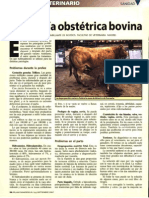 PATOLOGIA OBSTETRICA BOVINA
