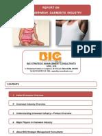Innerwear Industry Pitch Presentation
