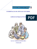 AUDITORIA EMPRESAS PRIVADAS.doc