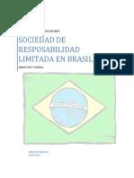 Derecho Mercatil Brasil