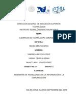 TRABAJO 6ejemplo de redes emergentes.pdf
