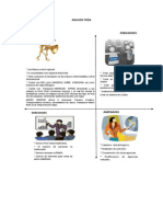 Analisis Foda Mejorado 2 (1)