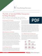 intestinal-efflux-transporters.pdf